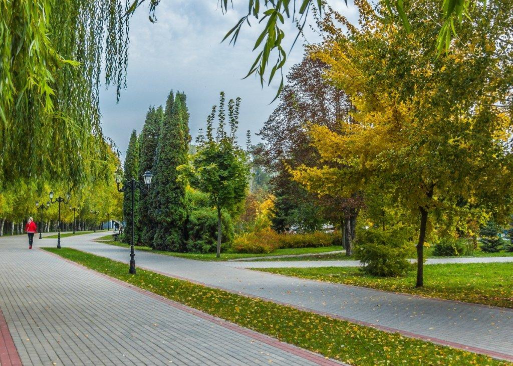 Городской парк город Алексеевка